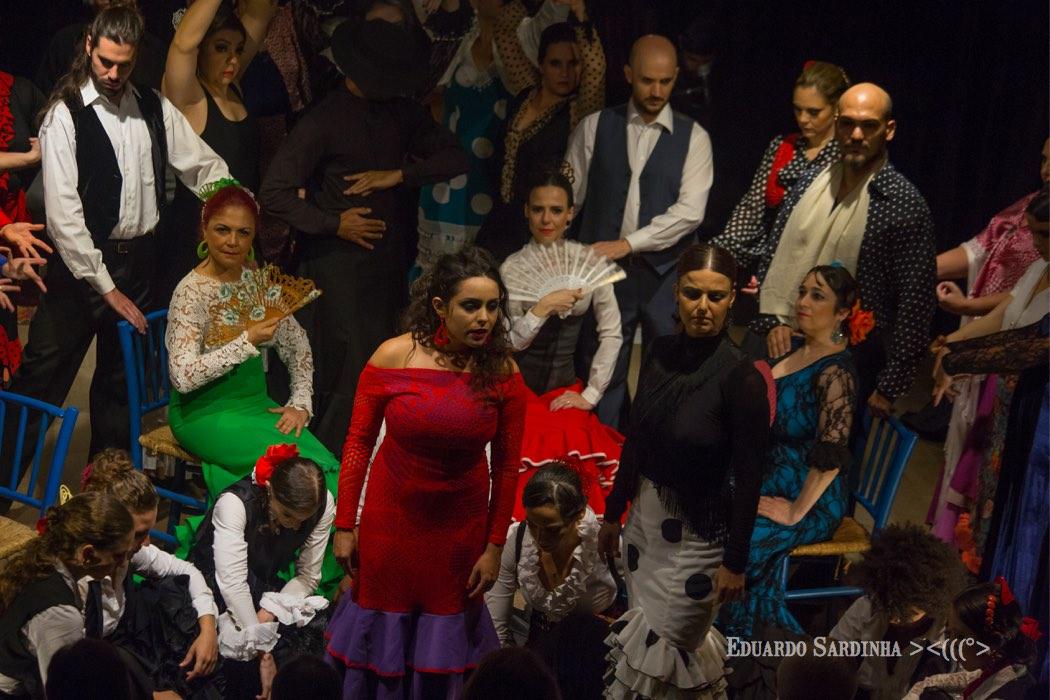 eduardo-sardinha-flamenco-galpao-da-danca-8643